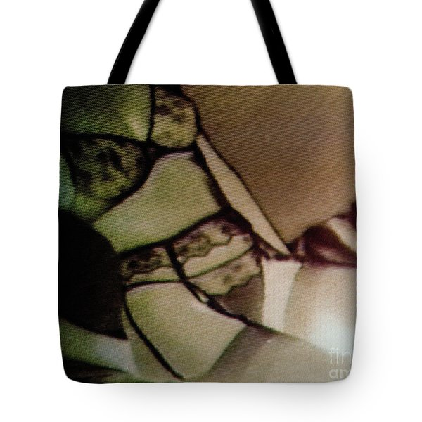 Tote Bag featuring the photograph Screen #30 by Hans Janssen