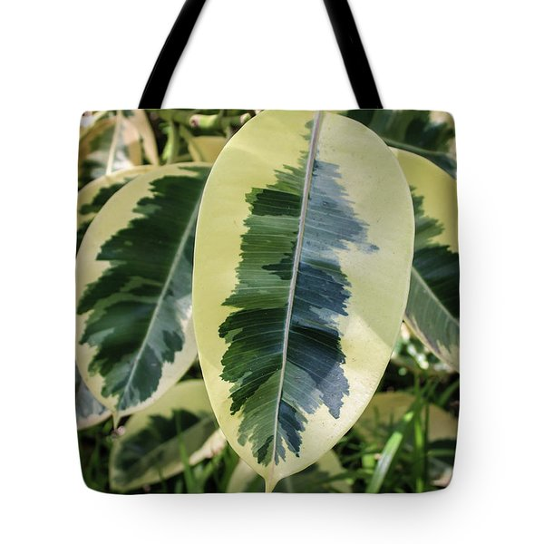 Scribble Scrabble Tote Bag