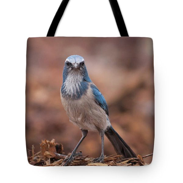 Scrub Jay On Chop Tote Bag