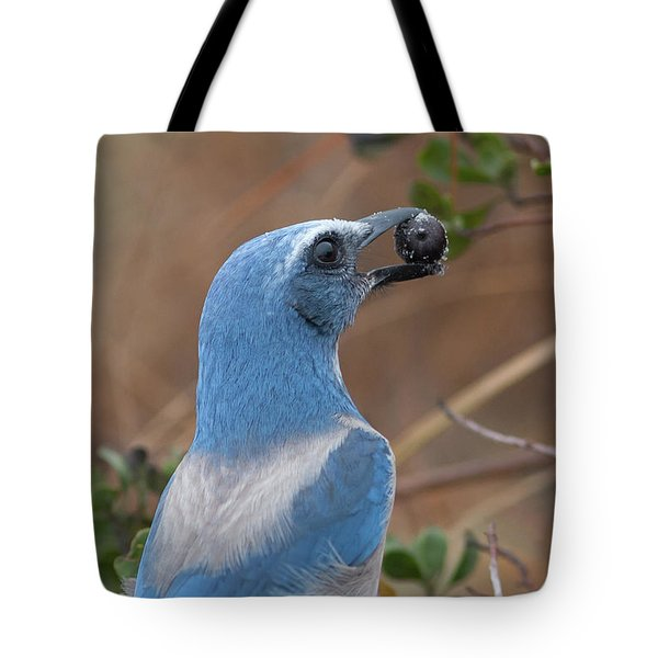 Scrub Jay With Acorn Tote Bag