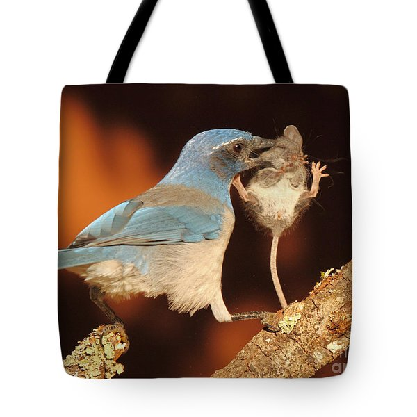 Scrub Jay With Jumping Mouse In Grasp Tote Bag