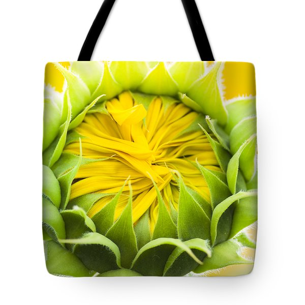 Scrunched Tote Bag