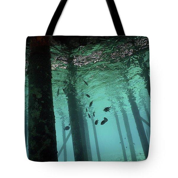 Scuba Bonaire Tote Bag