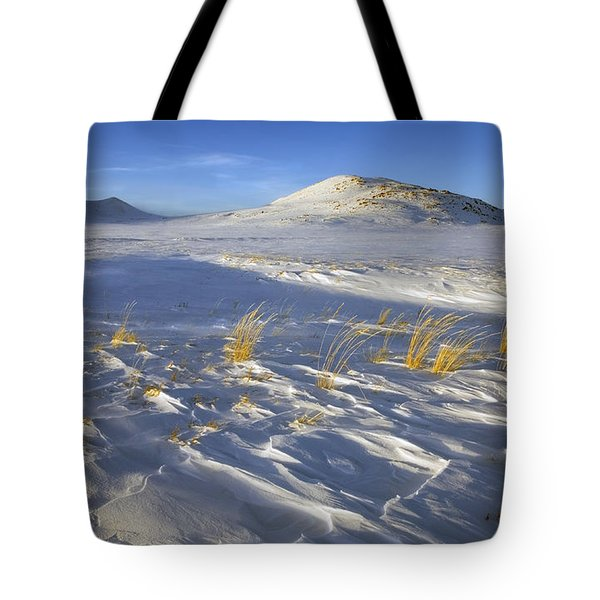 Sculpted By The Wind Tote Bag by Mike  Dawson