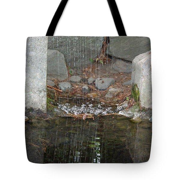 Sculpture Garden II Tote Bag by Suzanne Gaff