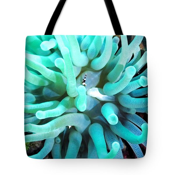 Sea Anemone And Squat Shrimp Tote Bag