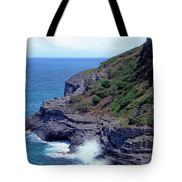 Sea Cave And Nesting Boobies Tote Bag by Frank Wilson