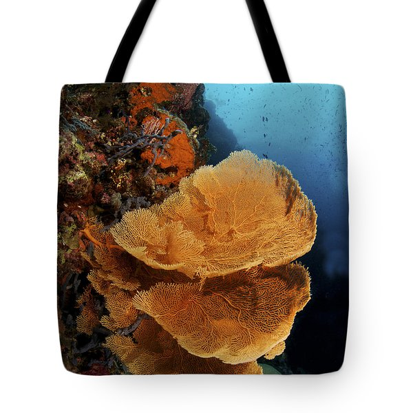 Sea Fan Coral - Indonesia Tote Bag by Steve Rosenberg - Printscapes