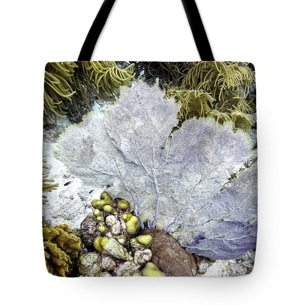 Tote Bag featuring the photograph Sea Fan Coral by Perla Copernik