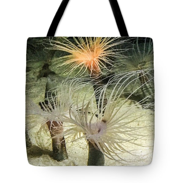 Sea Flower Tote Bag by Daniel Hebard