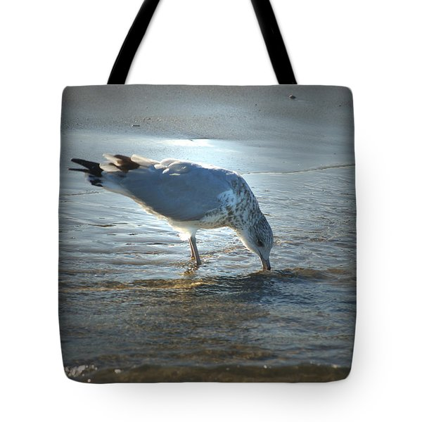 Sea Gull At Sundown Tote Bag