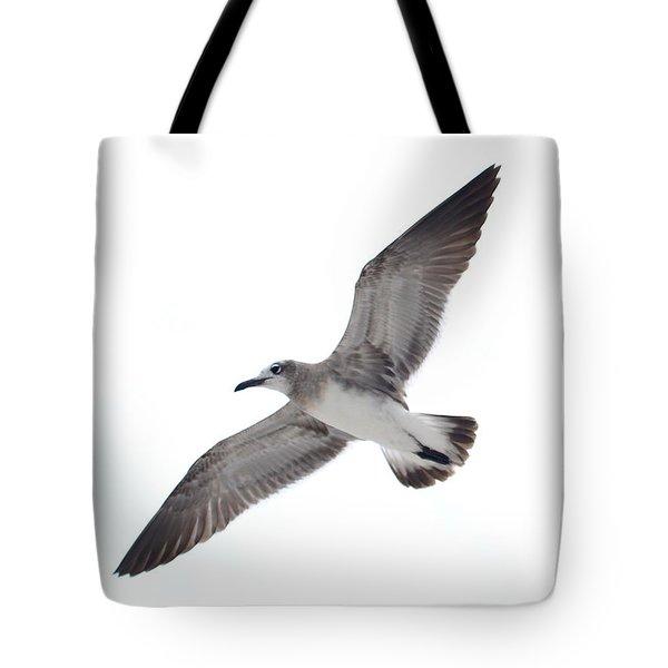 Sea Gull Tote Bag