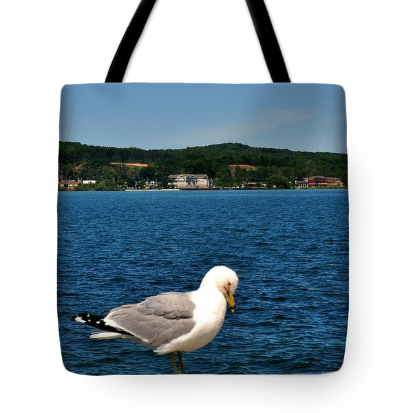 Sea Gull On Grand Traverse Bay Tote Bag by Diane Lent