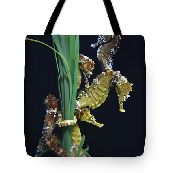 Tote Bag featuring the photograph Sea Horse by Joan Reese