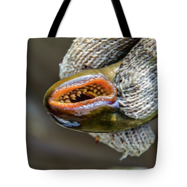 Sea Lamprey Tote Bag