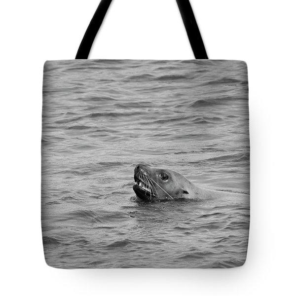 Sea Lion In The Wild Tote Bag