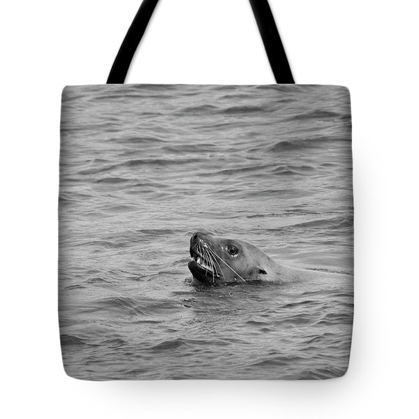 Sea Lion In The Wild Tote Bag