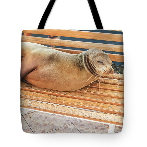 Sea Lion On A Bench, Galapagos Islands Tote Bag