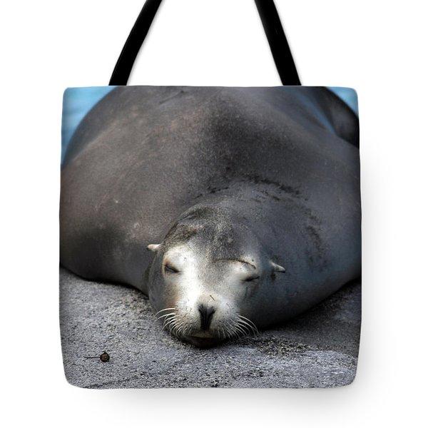 Sea Lion Snooze Tote Bag