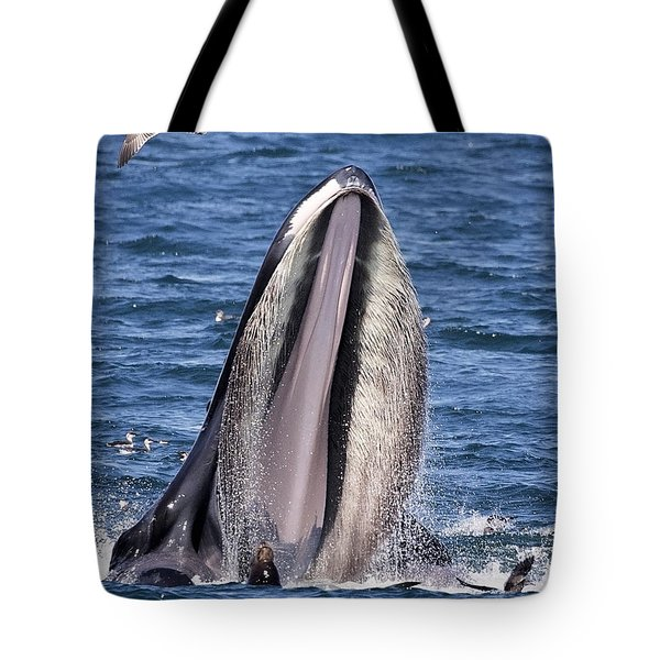 Sea Lions Are Friends, Not Food Tote Bag