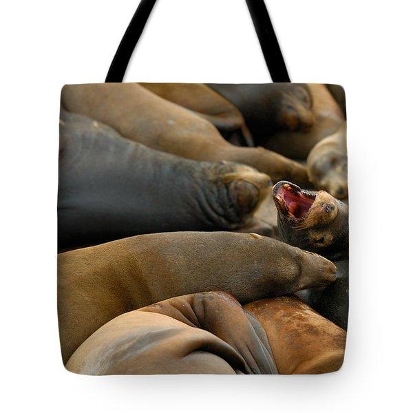 Sea Lions At Pier 39 San Francisco Tote Bag by Sebastian Musial