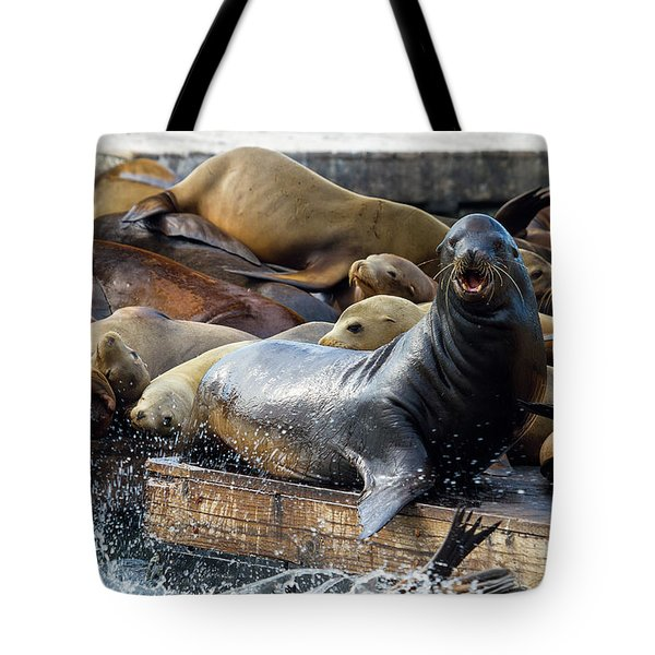 Sea Lions On The Floating Dock In San Francisco Tote Bag