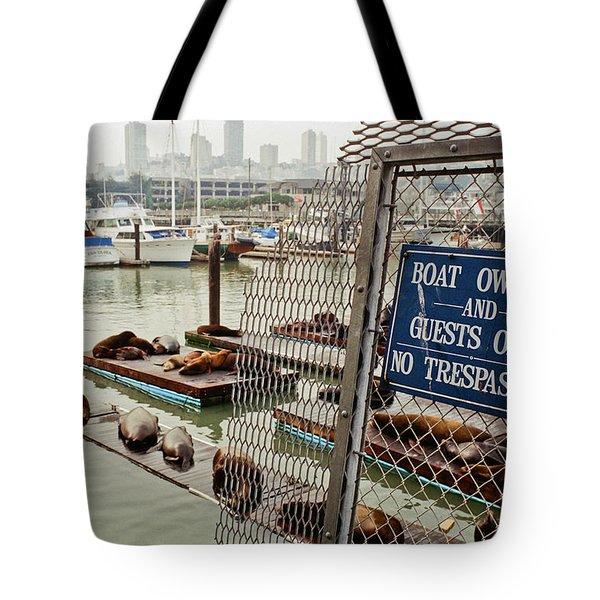 Sea Lions Take Over, San Francisco Tote Bag