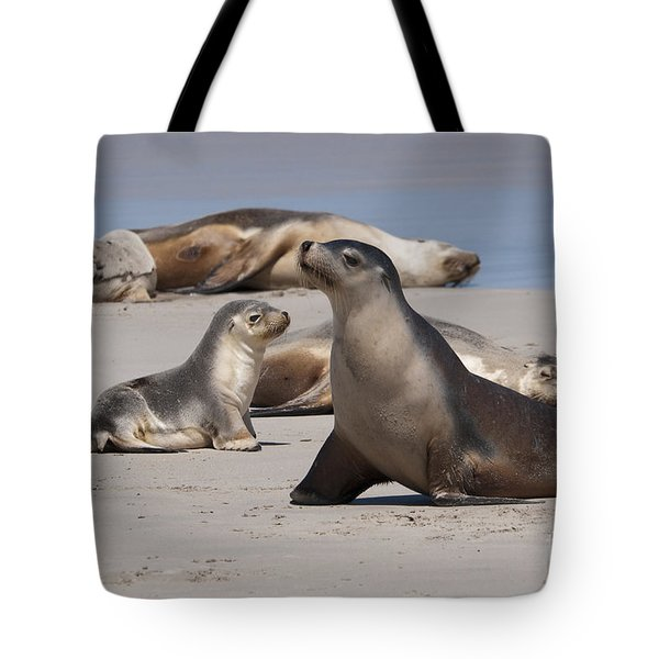 Tote Bag featuring the photograph Sea Lions by Werner Padarin