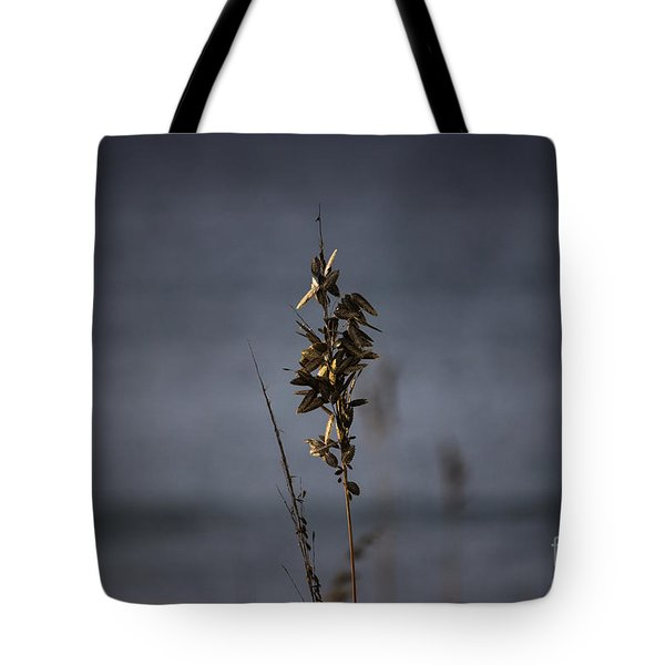 Sea Oat Tote Bag