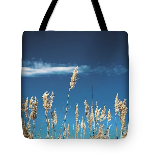 Tote Bag featuring the photograph Sea Oats On A Blue Day by Colleen Kammerer