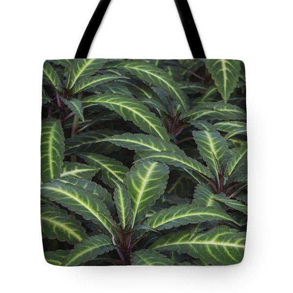Sea Of Leaves Tote Bag