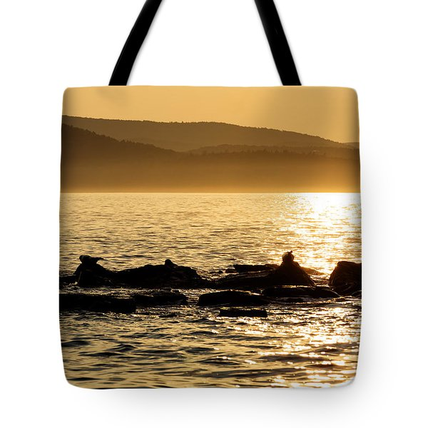 Tote Bag featuring the photograph Sea Of Seals by Gary Smith