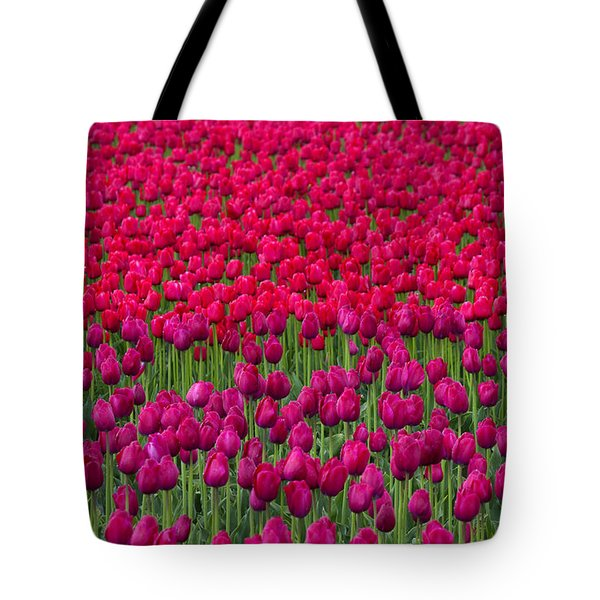 Sea Of Tulips Tote Bag by Mike  Dawson