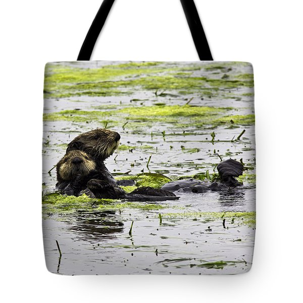 Sea Otters 1 Tote Bag