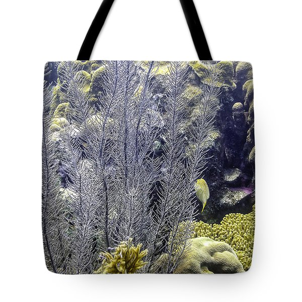 Sea Plumes Coral 2 Tote Bag by Perla Copernik