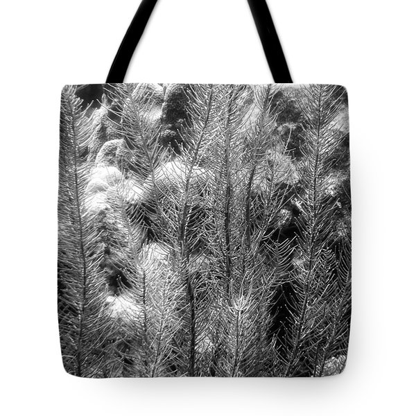 Sea Plumes Coral Tote Bag by Perla Copernik