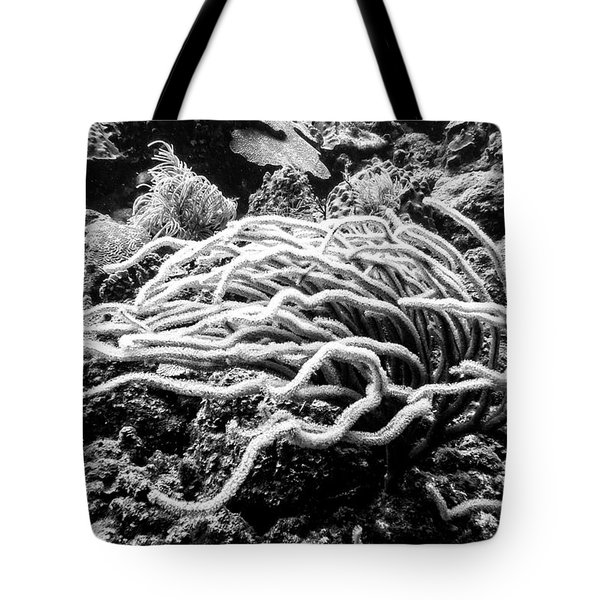 Tote Bag featuring the photograph Sea Rods In Movement by Perla Copernik