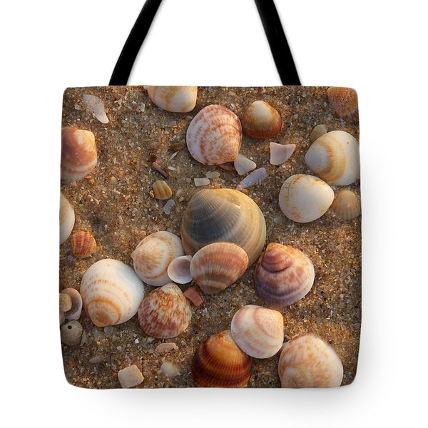 Sea Shells At Sunset Tote Bag