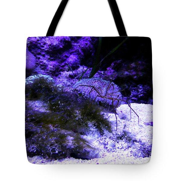 Sea Spider Tote Bag