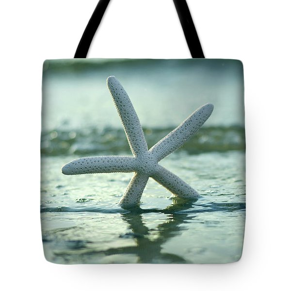 Tote Bag featuring the photograph Sea Star Vert by Laura Fasulo