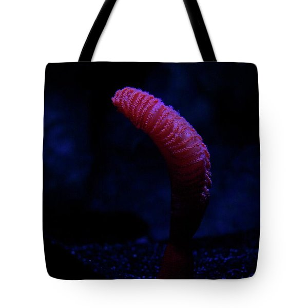 Sea Worm Tote Bag by Xn Tyler