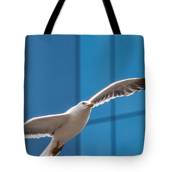 Seabird Flying On The Glass Building Background Tote Bag