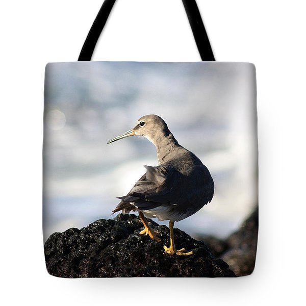 Seabird Tote Bag by Mary Haber