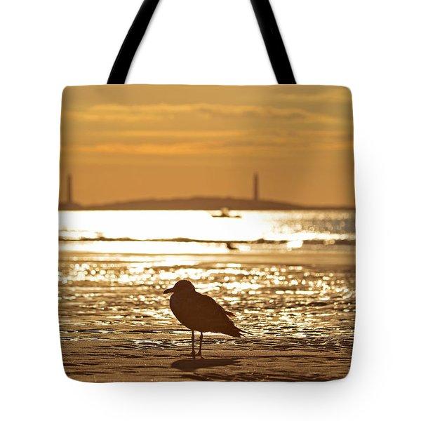 Seagull Admiring Thacher Island Gloucester Ma Good Harbor Beach Tote Bag