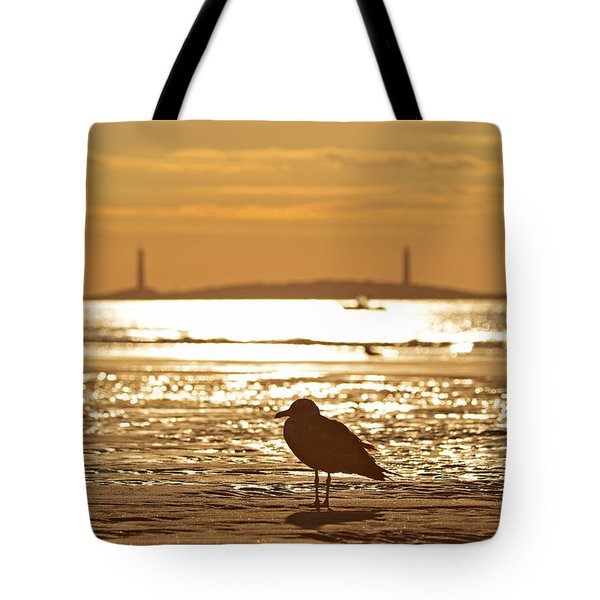 Seagull Admiring Thacher Island Gloucester Ma Good Harbor Beach Tote Bag