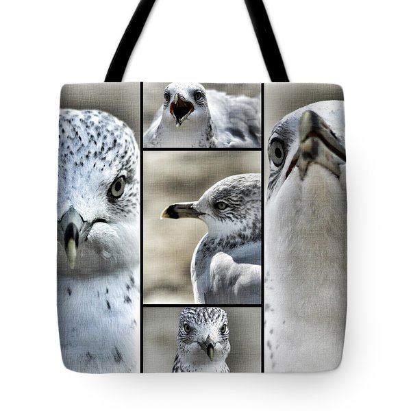 Seagull Collage Tote Bag by Aurelio Zucco