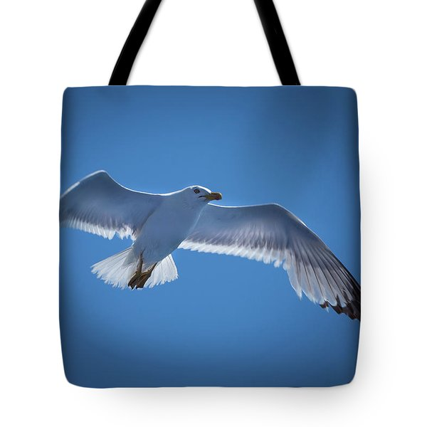 Tote Bag featuring the photograph Seagull by Davor Zerjav