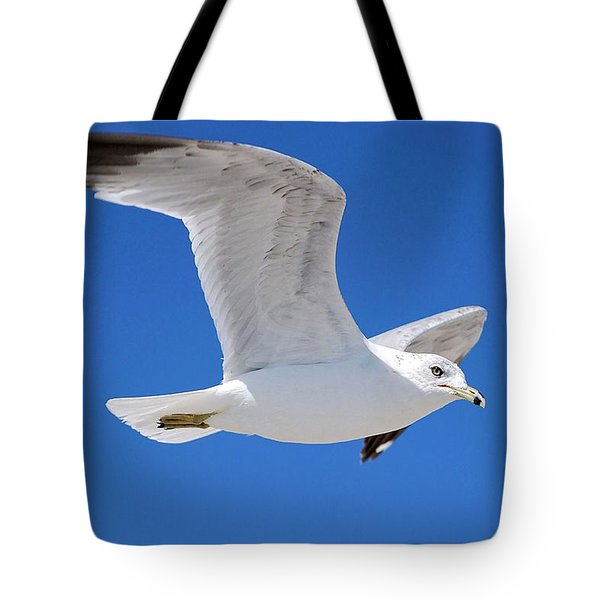 Tote Bag featuring the photograph Seagull by Ludwig Keck
