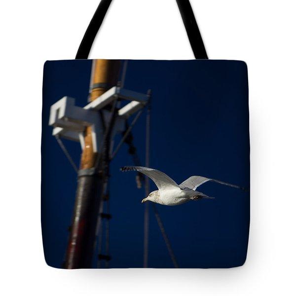Seagull Of Mystic Ct Tote Bag