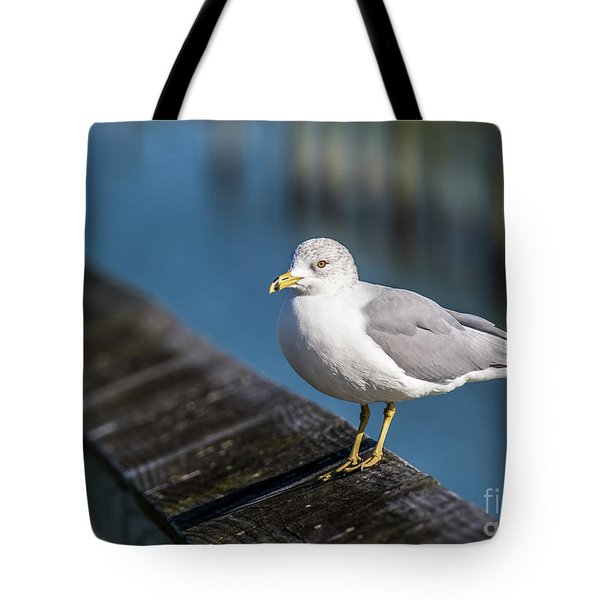 Seagull On A Railing Tote Bag